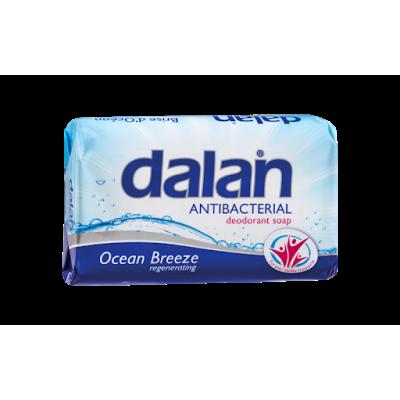 Dalan sapun antibacterial