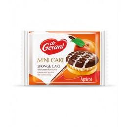 dr-gerard-mini-cake-27gr